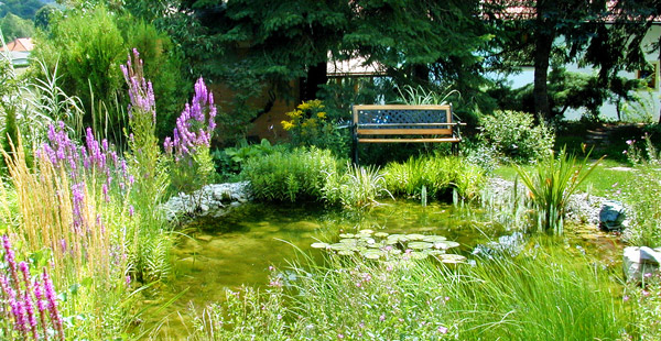 Chwala Gartengestaltung
